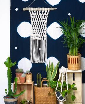 ambiance macrame plantes aurelie soligny
